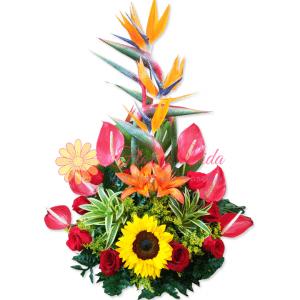 Expresa tu pasión arreglo floral | flor y vida