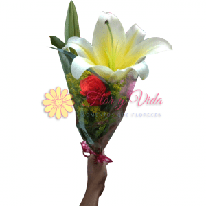 Amor real bouquet de rosas |flor y vida