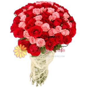 Adelante Bouquet de rosas |flor y vida