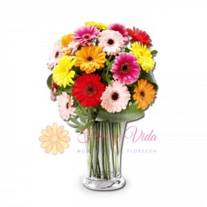 Hoy es el día florero de gerberas | flor y vida