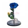 Rosa Inmortalizada o preservada azul orcuro en cali