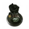 Rosa Inmortalizada o preservada negra en cali