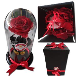 Rosa Inmortalizada o preservada Roja en cali | flor y vida cali
