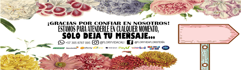 Floristerías En Cali Envío Gratis Flor Y Vida